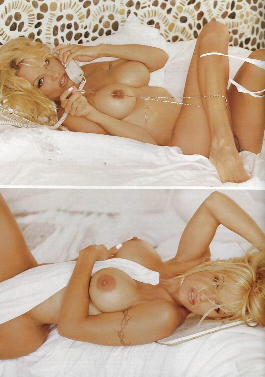 Pamela anderson porn pics